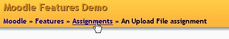 Point to Assignment, part of the Features course, in a site called Moodle