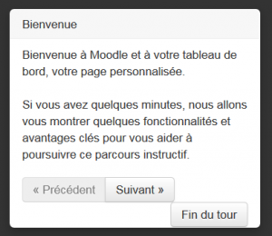Multilang user tour in French.png