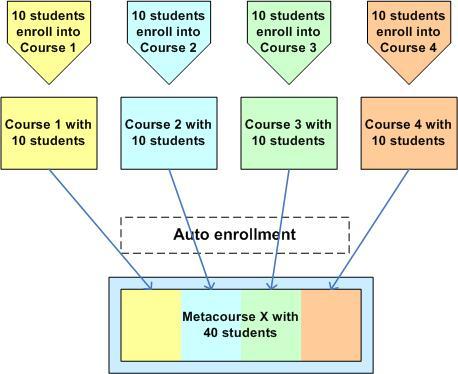 Standard Meta course usage