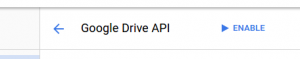 google-10-enable-drive.png