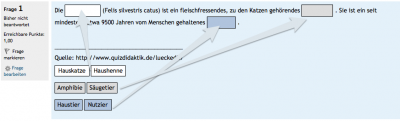 Drag-and-Drop-Text-Ergebnis-mit-Gruppen Uni-Ulm.png