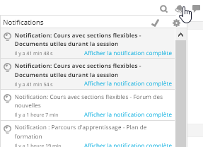 NotificationExemple.png