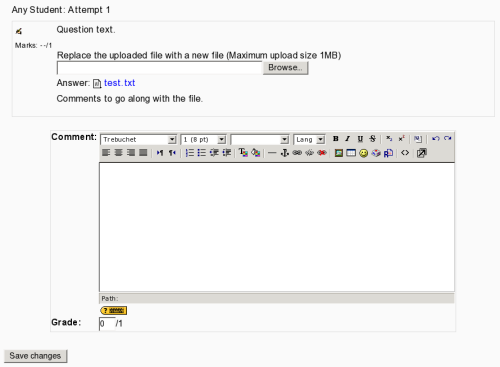 screenshot of file response question grading page