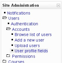 Link to the custom profiles interface from the site administration block